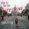 Tour any Disney theme park attraction in 15 minutes or less (all day, any day)